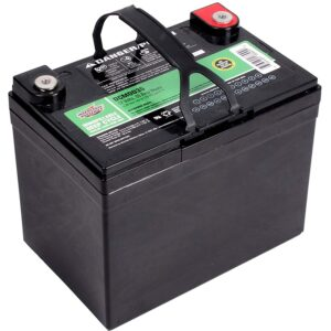Interstate Batteries DCM0035 Battery